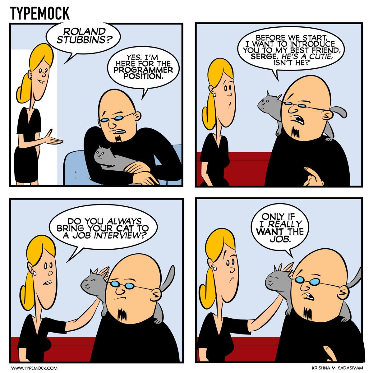 Typemock Comic, TypemockComic, Devhumor, programmer, coder, cat